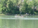 Rupperswil 2012 (19/35)