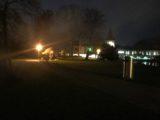 Waldweihnacht 2018 (4/11)